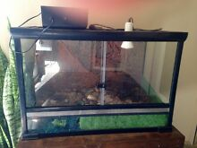 Large ExoTerra Reptile Tank & Extras Klemzig Port Adelaide Area Preview