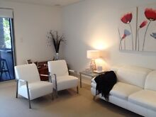 White Leather Armchairs Hollywell Gold Coast North Preview