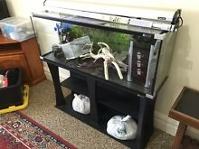 4ft tank & accessories Wasleys Gawler Area Preview