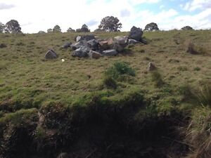 Wanted rocks boulders sandstone granite bush rocks etc Loganlea Logan Area Preview