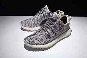 Yeezy Boost 350 Turtle Dove Coogee Eastern Suburbs Preview