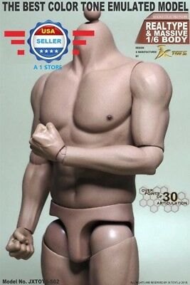 1 6 Scale Male Muscular Figure Body Jxs02 For Hot Toys Ttm20