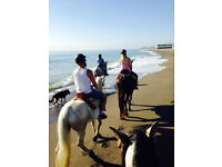 Horse Riding in Southern Spain winter 2016 summer 2017
