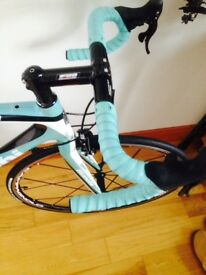 Bianchi sempre carbon road bike