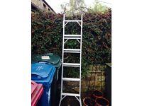 Beldray 3 way top flight ladder