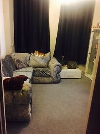1 bed colchester