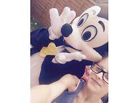 Minnie & Mickey for sale