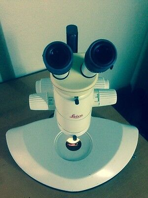 Leica Mz8 Stereo Zoom Microscope.