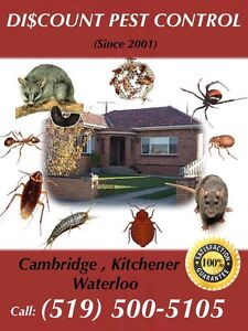DISCOUNT PEST CONTROL (Guaranteed, Licensed,Affordable) Cambridge Kitchener Area image 2