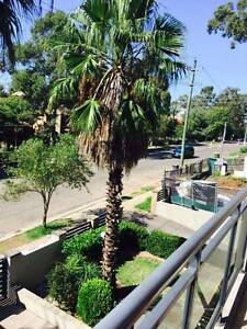 Elegant 2 Bedroom unit in Westmead - Close to School and Station Westmead Parramatta Area Preview