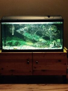 25 Gallon Fish Tank with Cabinet