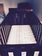 Cot Spreyton Devonport Area Preview