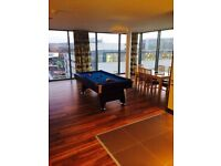 Full size American style pool table with blue velvet and black wood all accessories