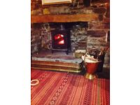 Esse Log burner / Multifuel stove, good condition Available after 5th September 2016