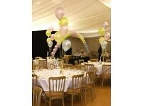 Balloon Decor Business For Sale