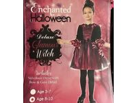 Girls Halloween Witch Costume 5-7 or 8-10years available