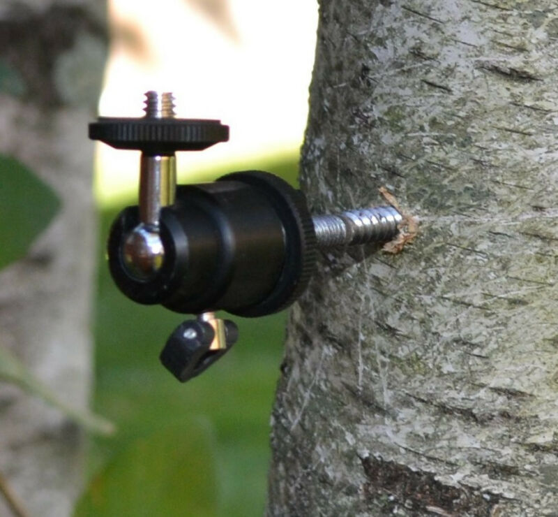 Swivel Tree Mount for Scouting Trail Hunting Camera Camcorder & Videocam