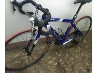 Giant ocr road bike small frame