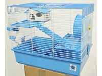 Gorgeous Teddy Bear Syrian Hamster + Cage & Goodies