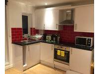 Modern 2 Bedroom 2 Bathroom FURNISHED apartment in Cambridge City Centre