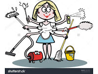 Part time housekeeper / cleaner required for work in Boscombe 3-4 hours - £30
