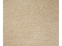 SOFT TOUCH FIRST IMPRESSION BY VICTORIA CARPET IN CLEAN CUT 5 X 2.86 M RRP £390