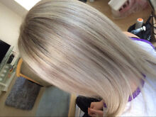 Qualified Mobile Hairdresser -$80 Full Foils (All Lengths incl Toner) Clear Island Waters Gold Coast City Preview
