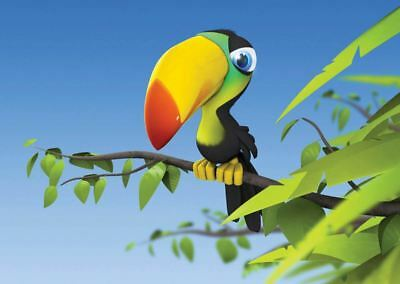 TOUCAN BIRD FUNNY DIGITAL PICTURE POSTER PRINT AMK613