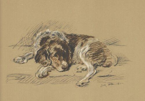 Welsh Springer Spaniel - Dog Print - 1937 L. Dawson