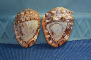 Vintage-Pair-Carved-Roman-Man-Woman-Sea-Shell-Seashells