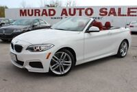 2016 BMW 2 Series Oshawa / Durham Region Toronto (GTA) Preview