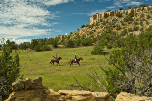 40 Acre West Texas Ranch !! Awesome Location !! Below Wholesale Old Deed !