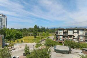 447 10838 CITY PARKWAY Surrey, British Columbia