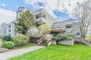 314 5294 204 STREET Langley, British Columbia
