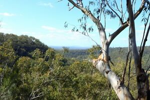 FARM RETREAT Nymboida Clarence Valley Preview