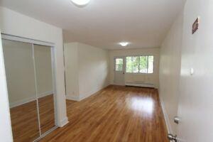 Two-Bedroom Contemporary Apt! Newly-Renovated with Washer/Dryer!