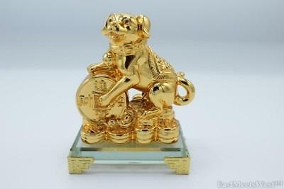 Feng Shui Gold Dog Zodiac Year of Dog Lucky Money Dog on Tresure  w Crystal Base
