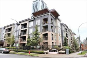 407 13339 102A AVENUE Surrey, British Columbia
