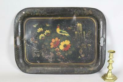 FANTASTIC 19TH C PA PAINT DECORATED TIN TOLEWARE TRAY BIRD OF PARADISE DESIGN