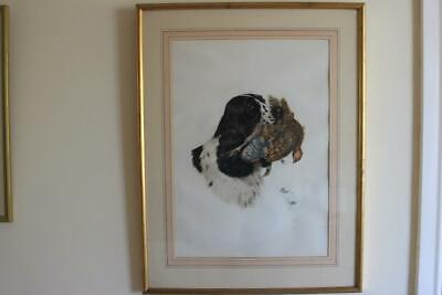 Large Framed & Glazed Painting Working Spaniel On Board