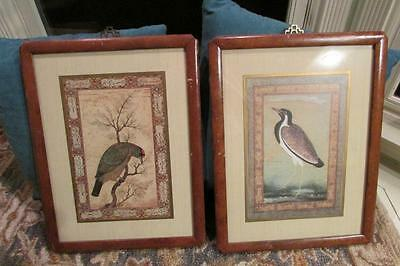 17th Century Framed Print - Pair of Framed Birds of the Mughal School Reproductions of 17th Century Painting