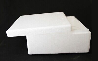 Insulated Shipping Container Styrofoam Cooler Usps Medium Flat Rate Box