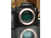 Sony a7 body only for sale with box and all accessories. BARGAIN quick sale