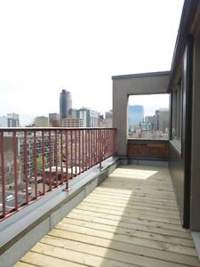 Penthouse 2 min. from McGill, large balcony, nice view