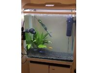 100 litre fish tank with stand