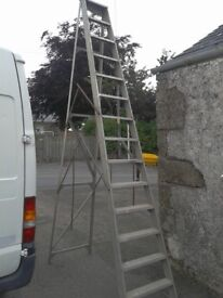 14 Tread Aluminum class 1 step ladder, 3.6M 12ft high