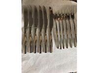 Villeroy Boch 18/10 steak set cutlery