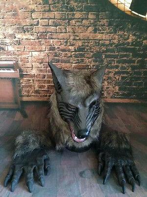 Mask Wolf  Gloves Werewolf Halloween Costume Latex Scary Wolfman Cosplay Fangs - Wolf Fangs Halloween