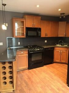 1st Month Free!! 3 Bed, 2 Bath - Richmond Row. All Inclusive! London Ontario image 1