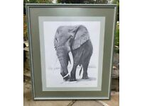 Elephant print pen and ink drawing